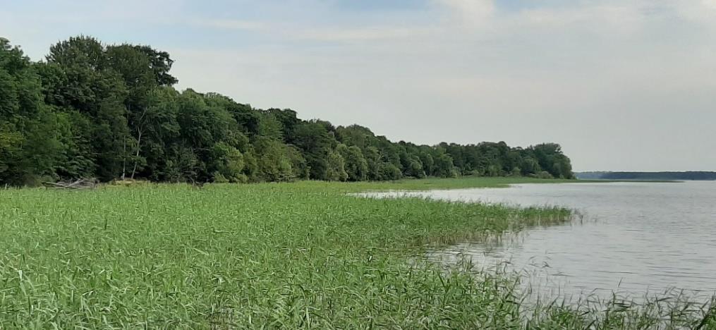 Freiwilligen Vereinbarung Schwerniner Seen1